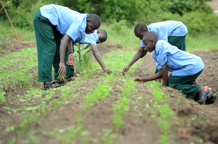 Kindernothilfe Farmschule in Uganda
